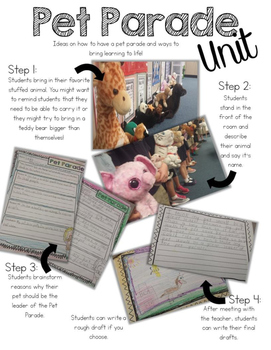 Pet Parade - A Persuasive Writing Unit