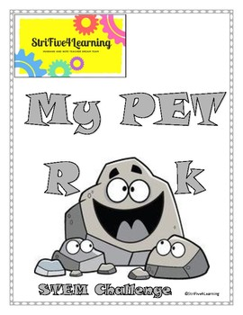 Pet Rock STEM Challenge
