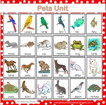 Pet Theme for Elementary ELL