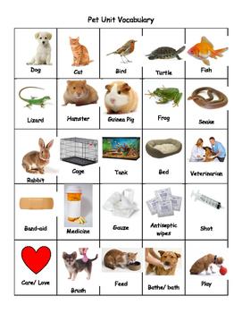 Pet Unit Vocabulary Bingo