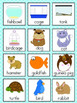 Pet Vocabulary Cards