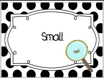 Pet Vs Wild, Large Vs Small, Can You  Sort Them All?~Animal Classification/Sort
