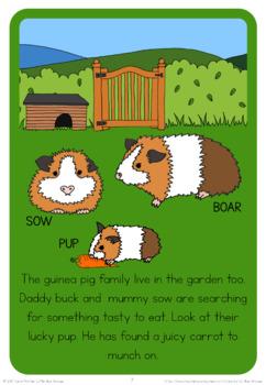 Pet families  book