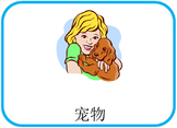 Pet in Chinese Flashcards