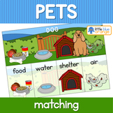 Pet animal needs activity