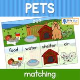 Pet animal needs activity