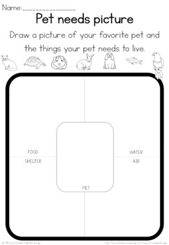 Pet animal needs observation sheet