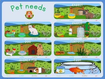 Pet animal needs poster