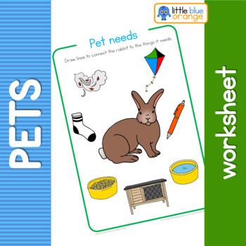 Pet animal needs worksheet