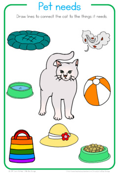 Pet animal needs worksheet