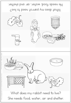 Pet animal needs coloring booklet