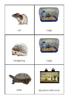 Pets and their homes sorting and matching work