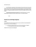 Pete the Cat and His Magic Sunglasses Speech & Fluency Activities