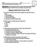 Peter Pan Comprehension Quiz (Chapters 6-9)