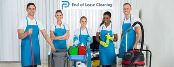 Peters Premier Cleaning Solution