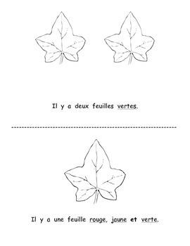 Petit livre 20:  Les feuilles