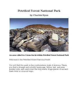 Petrified Forest National Park for Kids