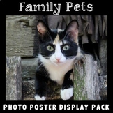 Pets | Photo Posters with Vocabulary | Animals | Home and Family