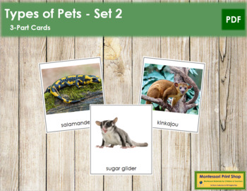 Pets: 3-Part Cards  Set 2