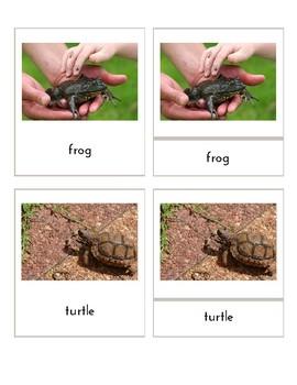 Pets (3 Part Montessori Cards / TOOB Matching Cards)