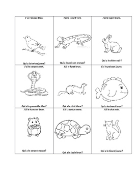 Pets- A basic French Unit