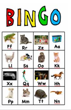 Pets Bingo Photos Match A to Z Pet Book