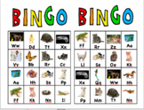 Pets Bingo Photos Match A to Z Pet Book