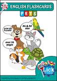 Pets - English Flashcards