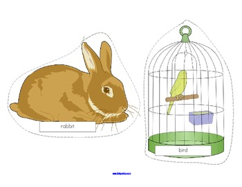 Pets Theme Lift-the-Flap Emergent Reader