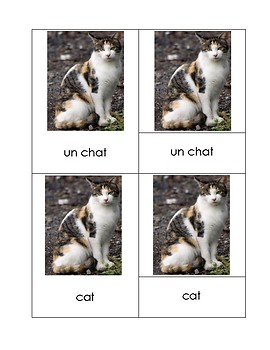 Pets French-English 3 Part Cards