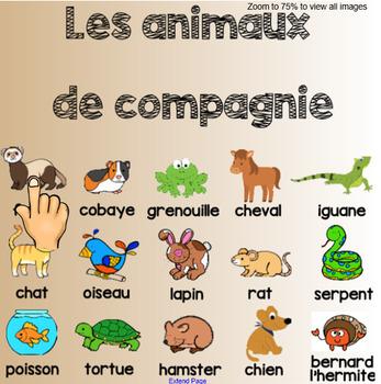 Pets / Les animaux de compagnie - Interactive Smartboard vocabulary slide