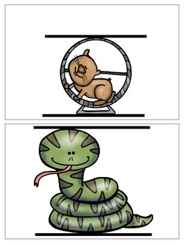 Pets Measurement Cards