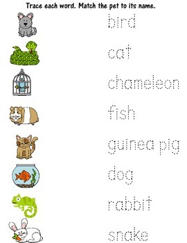 Pets! Pets! Pets!