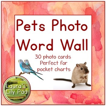 Pets Photo Word Wall and Writing Paper