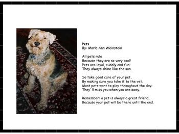 Pets Poem