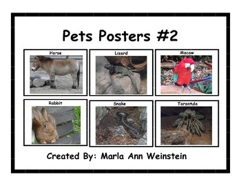Pets Posters #2