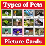 Pets Preschool Picture Cards