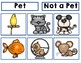 Pets Study Anchor Charts & Investigation Webs