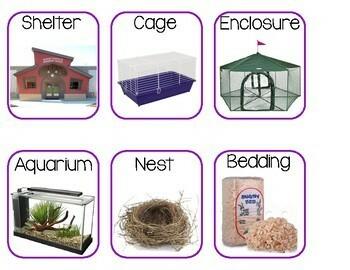 Pets Study Bundle Pack