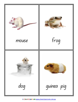Pets Vocabulary Flash Cards Word Wall x 31 - 8 pages
