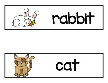 Pets Vocabulary Word Cards and Days of the Week Cards