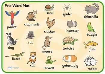 Pets Word Mat
