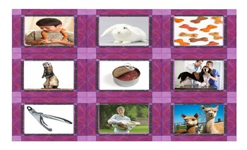 Pets and Pet Care Spanish Legal Size Photo Card Game