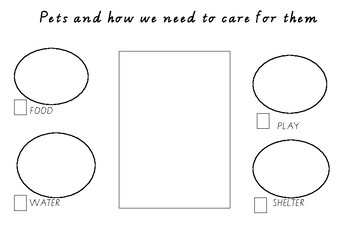 Pets and how we need to care for them worksheet