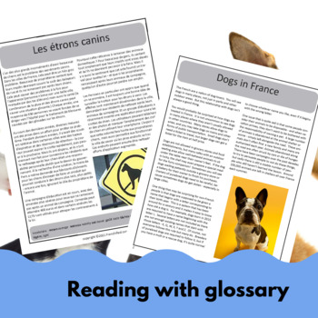 Pets in France - a reading & activity unit