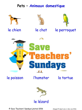 Pets in French Worksheets, Games, Activities and Flash Cards