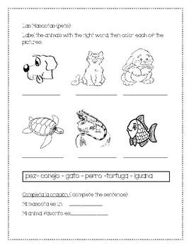 Pets in Spanish   Las Mascotas