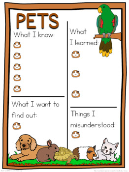 Pets schema  worksheet