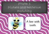 Phase 3 - Picture and Sentence Matching