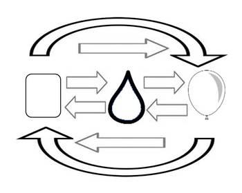 Phase Changes in Matter Graphic Organizer